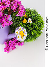 Watering can with fresh flowers