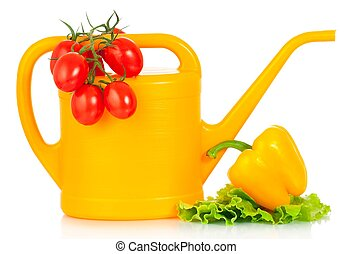 Watering can with raw vegetables isolated on white...
