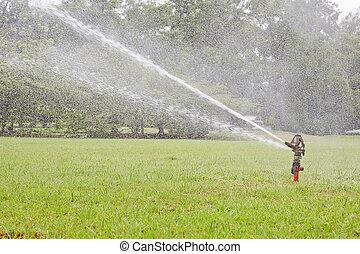Watering garden equipment sprinkler hose for irrigation plants.