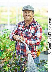 Watering garden - Mature man watering plants in the garden