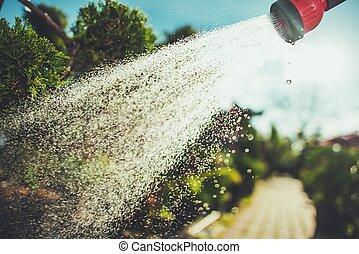 Watering Garden Plants in Summer