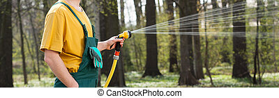 Watering lawn with garden hose