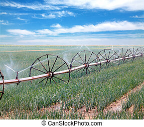 Watering of field - Irrigation system for water supply in ...
