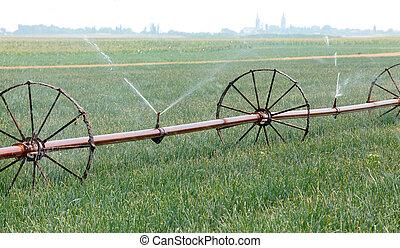 Watering of field