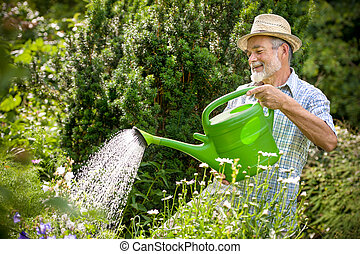 Watering the flowers in the garden - Senior man watering the...