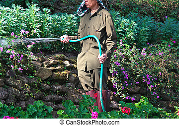 Watering the garden with a hose. - Watering the garden with...