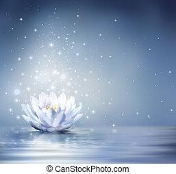 waterlily, csillogó blue, képben látható, víz