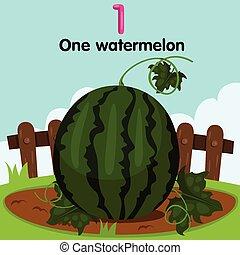 watermelo, illustrateur, premier