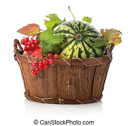 Watermelon and viburnum in basket isolated on white