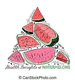 Watermelon Benefits 02 A