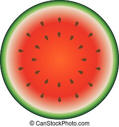 Watermelon colorful icon isolated on white. Circle red green watermelon illustration vector