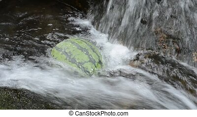 Watermelon cooling while swinging in fast flowing brook