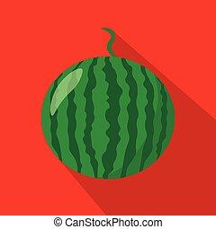 Watermelon flat icon