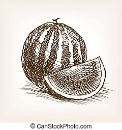 Watermelon fruit hand drawn sketch style vector