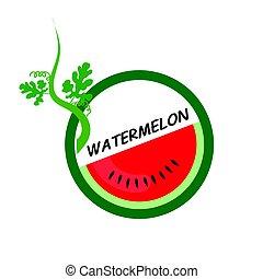 Watermelon Fruit icons flat style, Vector Illustration.