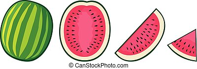 watermelon icons vector set