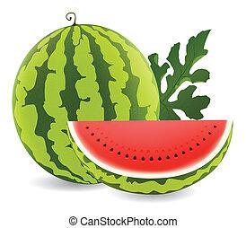 watermelon - illustration of juicy water melon kept on white...
