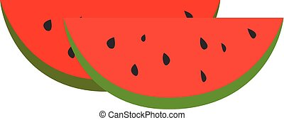 Watermelon, illustration, vector on white background.