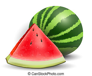 Watermelon realistic icon illustration, vector