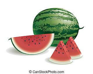 Watermelon - Realistic vector illustration of a watermelon...