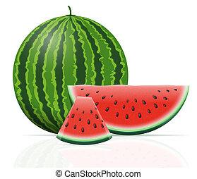 watermelon ripe juicy illustration isolated on white...