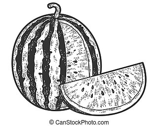 Watermelon, sketch scratch board imitation. Black and white. Engraving vector illustration.