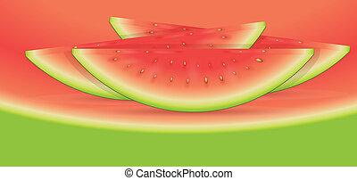 Watermelon Slices Vector