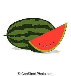 melon - watermelon, vector illustration.
