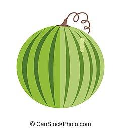 Watermelon Vector Illustration In Flat Style Design.