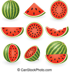 Watermelon - Vector illustration of watermelon