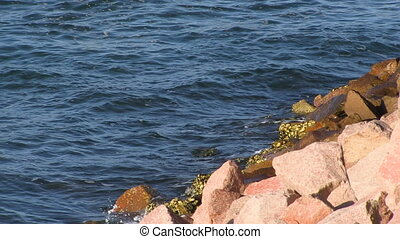 Waters and pebbles stones - A birds eye view shot of waters...
