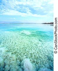 waterscape, 死海, 中に, イスラエル
