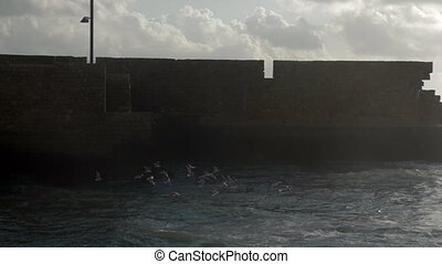 Waterscape with sea-gulls, wavy sea and ancient city wall -...