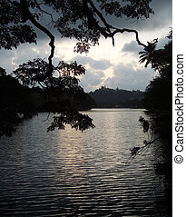 waterside scenery in Sri Lanka