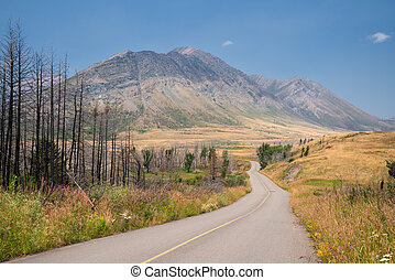 Waterton Lakes National Park, Alberta, Canada - Waterton...