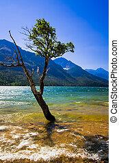 waterton, nazionale, parco, Laghi