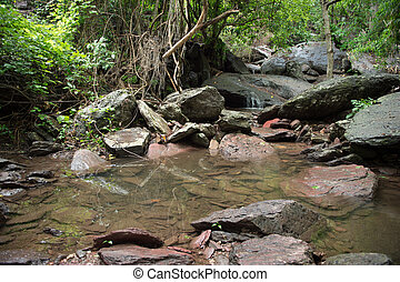 waterval, bos, landscape