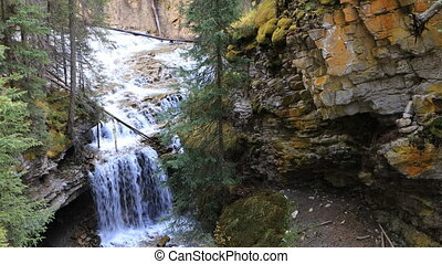 waterval, in, cañon, nationaal park banff, canada