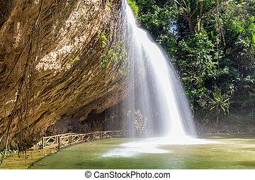 waterval, kroatië, bos, diep