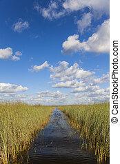 Florida Everglades - Waterway through the Florida Everglades...