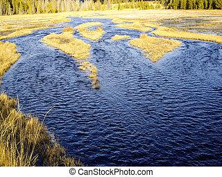 Watery Marsh