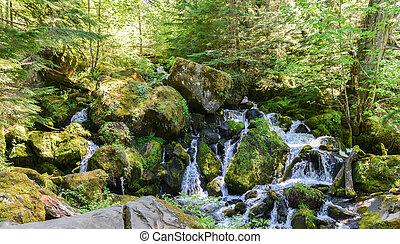 Watson Falls, Oregon - Series of cascades at the base of...