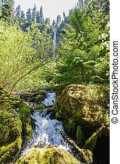 Watson Falls, Oregon - Watson Falls in the North Umpqua...