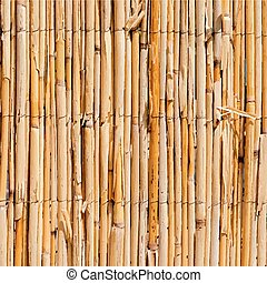 Wattle Fence Texture