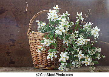 Wattled basket with a bouquet from a fragrant jasmin