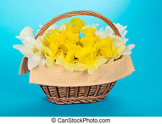 Wattled basket with narcissuses