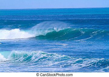 wave., óceán