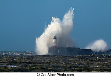 Wave and Gull Over Lighthouse