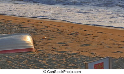 wave beach sea 4k