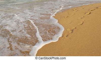 Wave Foam With SparkleFoamy waves